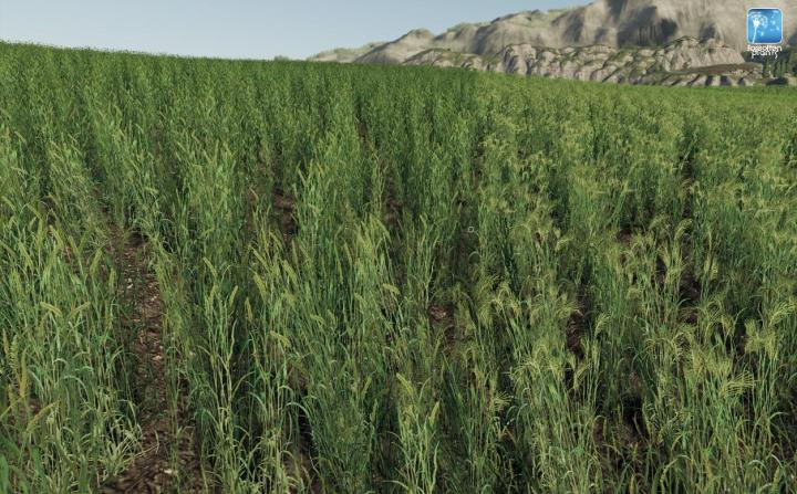 FS19 - Forgotten Plants - Wheat / Barley V1