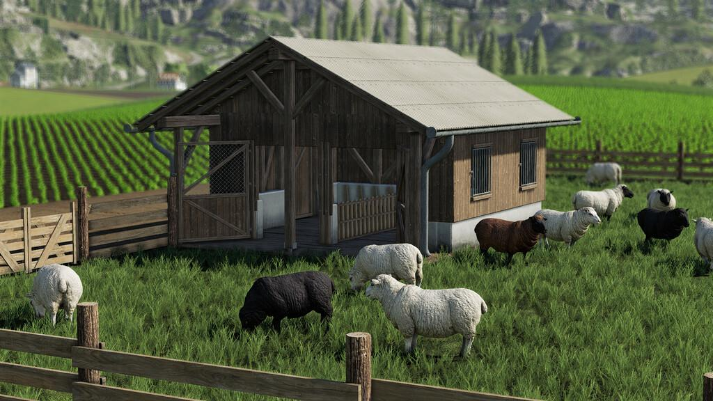 Sheep Pasture V1