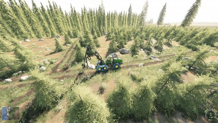 Bear Forest Map V1.0