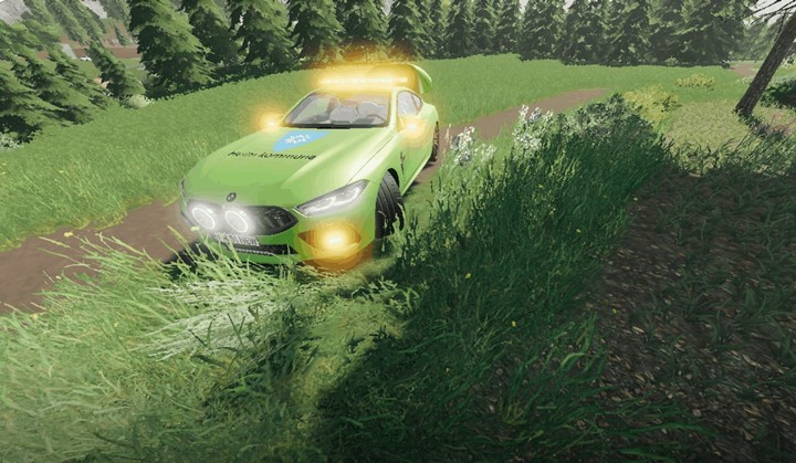 BMW Work Car V1.0