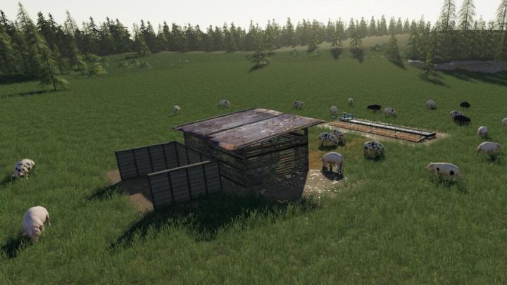 Open Pig Pasture V1