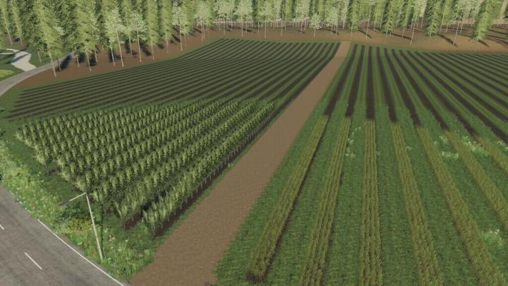 Ischia Farm Map V1.1.5.0