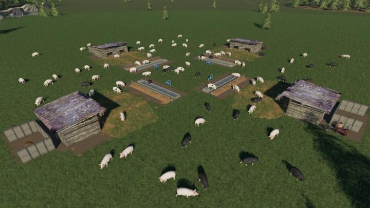 Open Pig Pasture V1.0.0.1